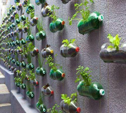 Ide kreatif buat kebun vertikal dari barang bekas   Zona