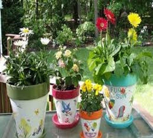 Proposal Pot Bunga Dari Botol Bekas Informasi Seputar Tanaman Hias